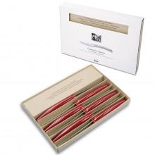 Coltellerie Berti - 6 coltelli Convivio Nuovo, manico in plexiglass colorato, scatola cartone